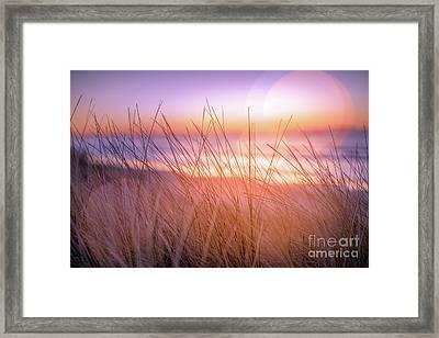 Sunset Bokeh Framed Print by Inger Vaa Eriksen