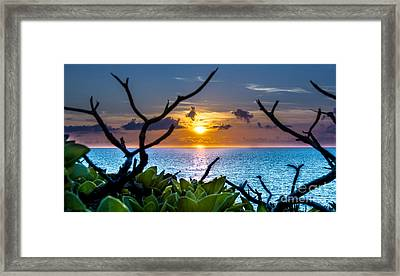 Sunset By The Point Framed Print