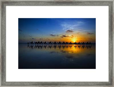 Sunset Camel Ride Framed Print by Louise Wolbers