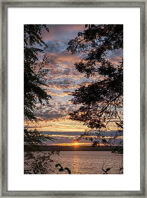 Sunset Caressed By Tree Branch Framed Print by Mary Lee Dereske