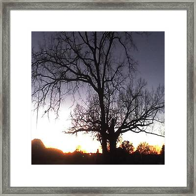 Sunset Framed Print by Carla Fionnagain