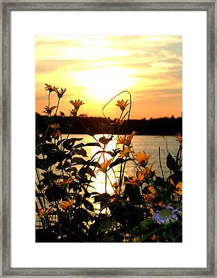 Sunset Central Park Framed Print