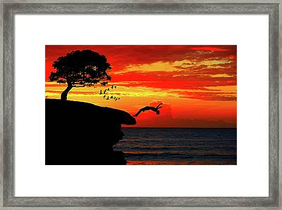 Sunset Dive Framed Print by Cocoparisienne