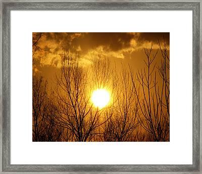 Sunset Framed Print by Dottie Dees
