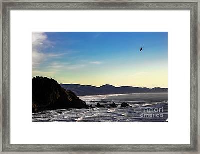 Sunset Eagle Framed Print by Jon Burch Photography