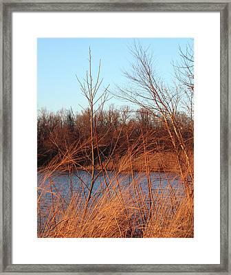 Sunset Field Over Water Framed Print