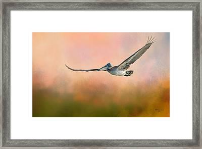 Sunset Flight Framed Print