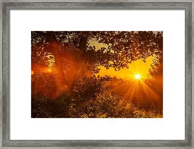 Sunset Fog Over The Pacific #3 Framed Print