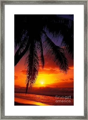 Sunset From The Beach Framed Print by Vince Cavataio - Printscapes