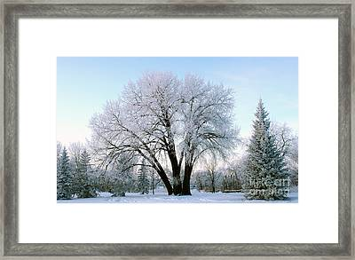 Sunset Frost Framed Print