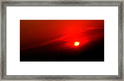 Sunset Geese Leaving Disappearing City - 0814  Framed Print