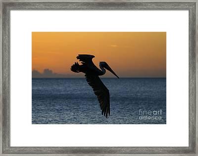 Sunset Glide Framed Print