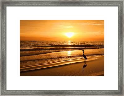 Sunset Gold Framed Print