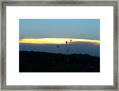 Framed Print featuring the digital art Sunset Gold Stripe Queen Anne by Jana Russon