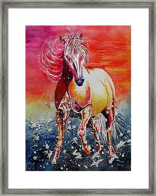 Sunset Horse Framed Print by Maria Barry