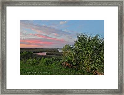 D32a-89 Sunset In Crystal River, Florida Photo Framed Print