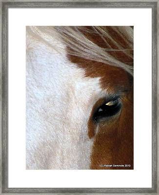 Sunset In Her Eyes Framed Print