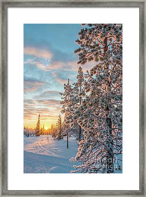 Sunset In Lapland Framed Print by Delphimages Photo Creations