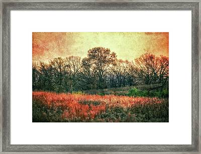 Sunset In Orange At Retzer Nature Center Framed Print by Jennifer Rondinelli Reilly - Fine Art Photography