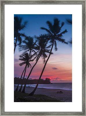 Sunset In Paradise Framed Print by Alex Lapidus