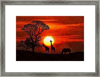 Sunset In Savannah Framed Print