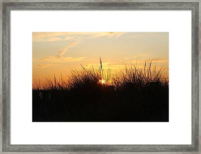 Sunset In The Grass Framed Print by Chuck Bailey