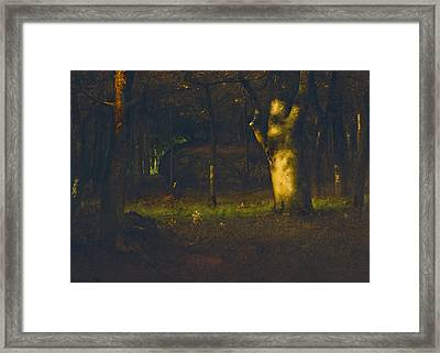 Sunset In The Woods Framed Print by George Inness