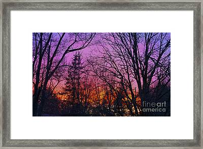 Sunset In The Woods-hdr Framed Print