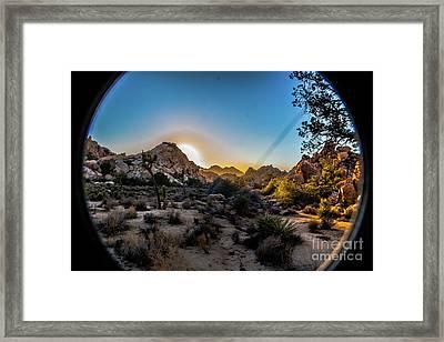 Sunset Joshua Tree National Park Framed Print