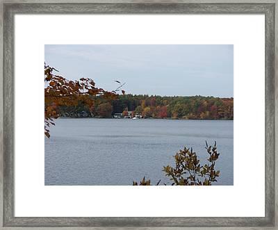 Sunset Lake II Framed Print by Rosanne Bartlett
