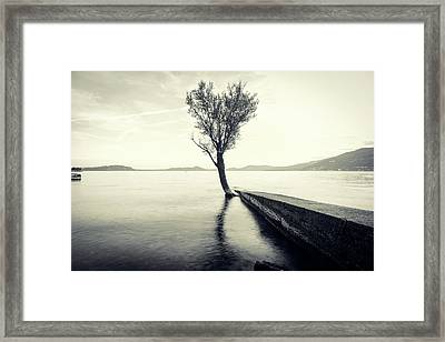 Sunset Landscape With A Tree In The Background Immersed In The L Framed Print