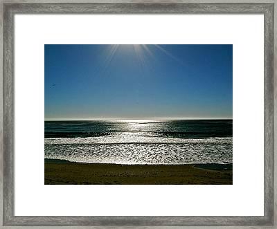 Sunset Light Framed Print by Liz Vernand