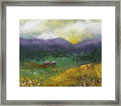 Sunset Meadow Framed Print by David Patterson