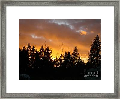 Sunset My Front Yard Framed Print by Mary Jo Zorad