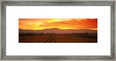 Sunset, Napa Valley, California, Usa Framed Print by Panoramic Images
