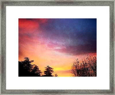 Sunset Framed Print by Niki Mastromonaco