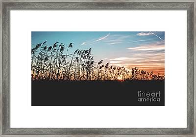 Sunset On Cameron Prairie National Wildlife Refuge Framed Print by Scott Pellegrin