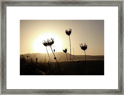 Framed Print featuring the photograph Sunset On Galilee Road by Yoel Koskas