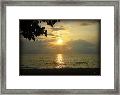 Sunset On Lake Michigan Framed Print by Trina Prenzi