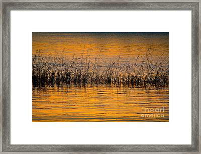 Sunset On  Merrymeeting Bay Framed Print by Susan Cole Kelly