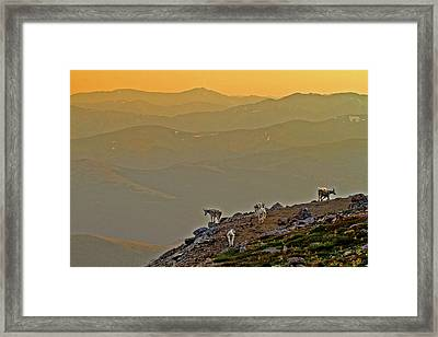 Framed Print featuring the photograph Sunset On The Edge by Scott Mahon