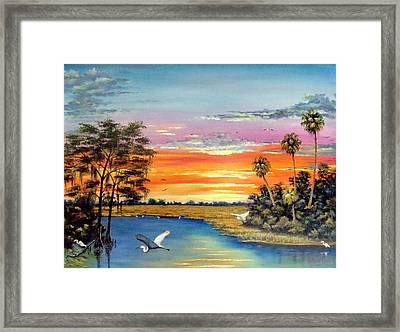 Sunset On The Glades Framed Print by Riley Geddings