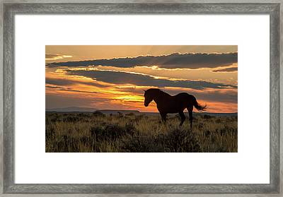 Sunset On The Mustang Framed Print by Jack Bell