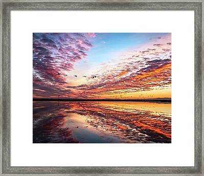 Sunset On The Pacific Flyway Framed Print