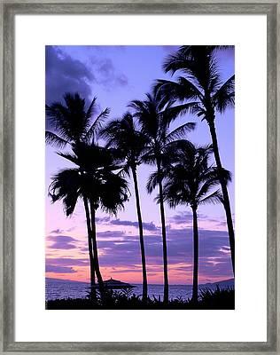 Sunset On The Palms Framed Print by Debbie Karnes