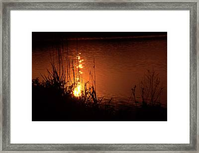 Sunset On The Water Framed Print by Barry Shaffer