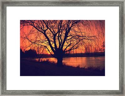 Sunset On Willow Pond Framed Print