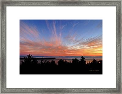 Sunset Over Cypress Framed Print by Tom Buchanan