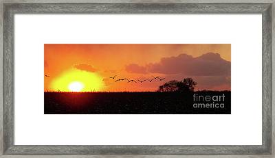 Sunset Over Easy Framed Print by Sue Stefanowicz