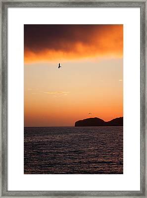 meet cb5d4 2a3f4 Sunset Over Sea Of Cortez Framed Print by Dina Calvarese